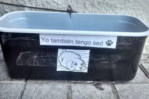 Foto:Facebook Uniendo Huellas. Imagen Por: