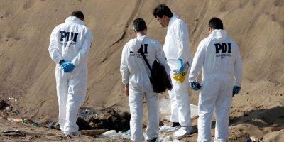 Pozo Almonte: perros abandonados mordieron y mataron a hombre de 61 años