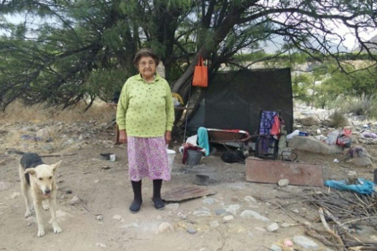 Foto:Ovalle Hoy: Vanesa Bou. Imagen Por: