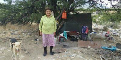 Solitaria mujer de 80 años vive bajo un árbol en Monte Patria