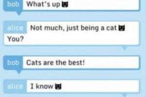 El servicio asegura que todos los mensajes son encriptados antes de salir de su dispositivo y ni ellos pueden leerlos. Foto:vía Tumblr.com. Imagen Por: