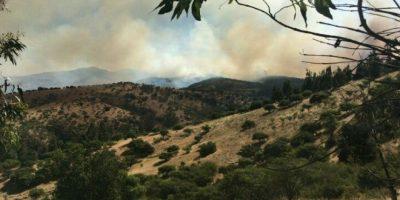 Declaran alerta roja en comuna de San Pedro por incendio forestal