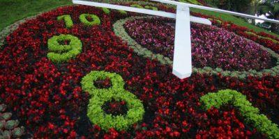 Viña del Mar: persecución policial termina en balacera frente al reloj de flores