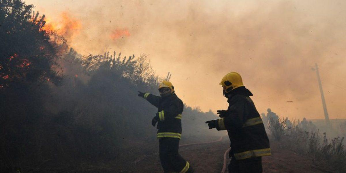 Valparaíso: declaran alerta preventiva por riesgo de incendios forestales