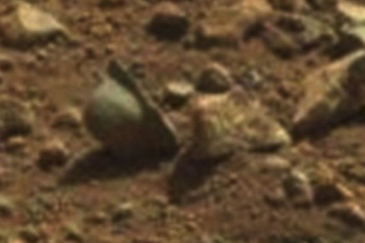 Supuesto casco de la Primera Guerra Mundial. Se encontró en abril de 2013 Foto:NASA. Imagen Por: