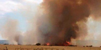 Alerta Roja por incendio forestal en Puchuncaví y Quintero: llamas amenazan a viviendas