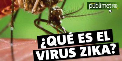 Infografía: ¿Qué es el virus Zika?