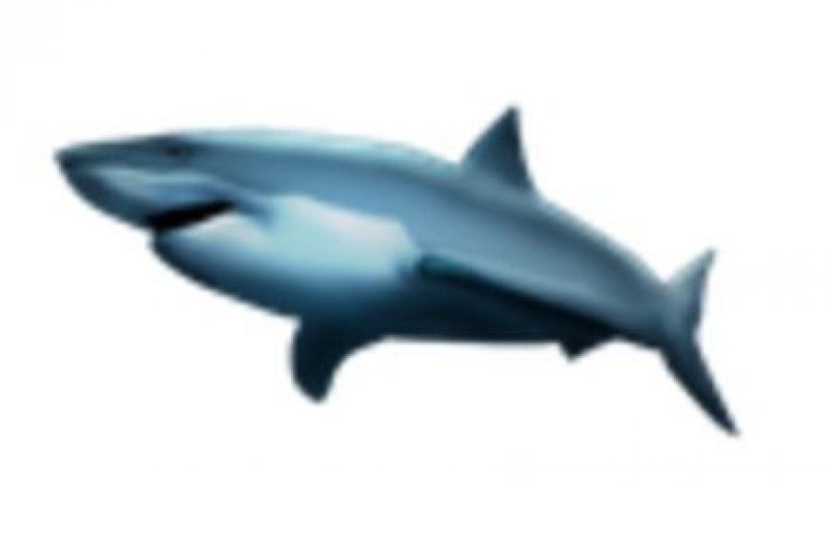 Tiburón. Foto:vía emojipedia.org. Imagen Por: