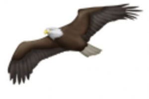 Águila. Foto:vía emojipedia.org. Imagen Por: