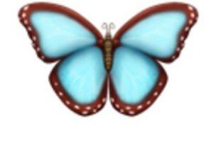 Mariposa. Foto:vía emojipedia.org. Imagen Por: