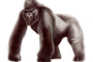 Gorila. Foto:vía emojipedia.org. Imagen Por: