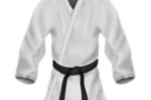Uniforme de artes marciales. Foto:vía emojipedia.org. Imagen Por:
