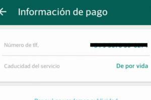 WhatsApp ahora es gratis de por vida. Foto:WhatsApp. Imagen Por: