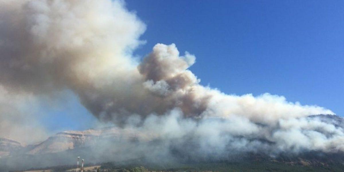 Incendio en Coyhaique: aumentan a 115 las hectáreas quemadas y mantienen alerta roja