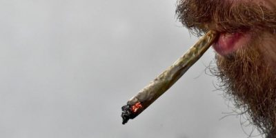 ¿La legalizarán? México abre el debate nacional para la regularización de la marihuana