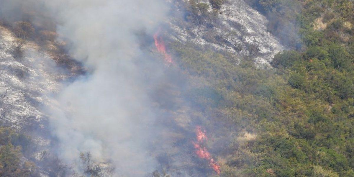 Onemi declara alerta roja para la comuna de Quilpué por incendio forestal