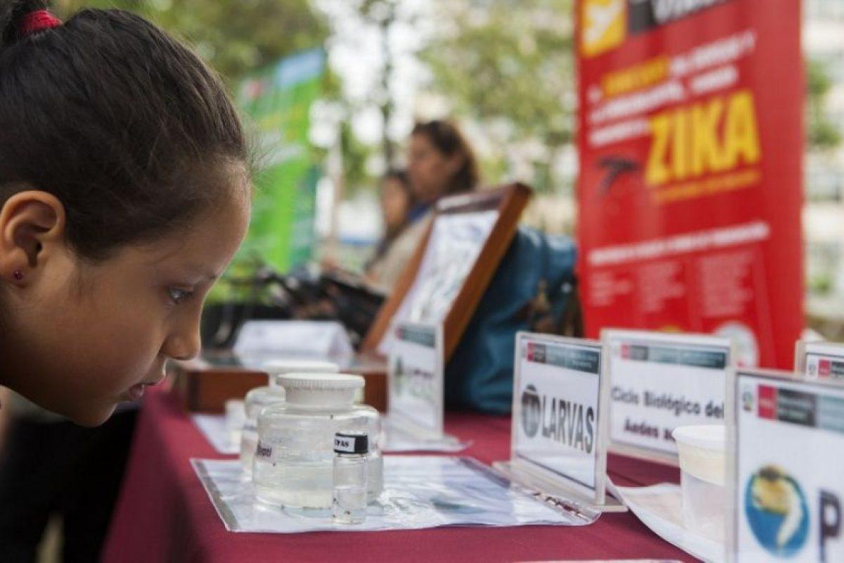 Sí, en 2007 ocurrió una epidemia que afectó a Malasia y Micronesia. En 2013 se registró un brote en la Polinesia Francesa. Y en 2014, algunos casos en la Isla de Pascua. Foto:AFP. Imagen Por: