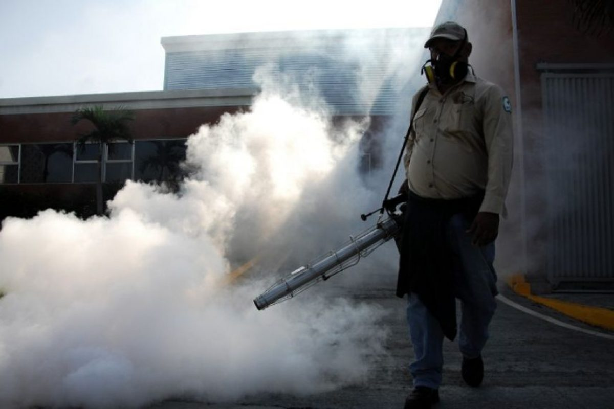 Este mosquito se encuentra principalmente en regiones tropicales. Foto:AFP. Imagen Por: