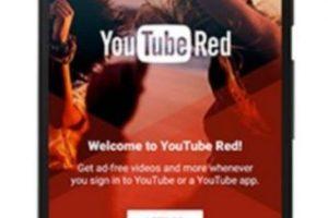 Pueden disfrutar sus videos preferidos sin anuncios. Foto:Vía YouTube. Imagen Por:
