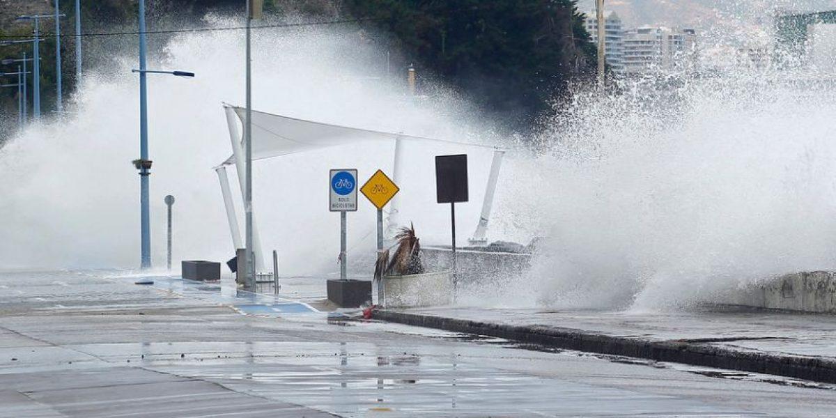 Marejadas: anuncian peak de olas para la noche de este viernes en Viña del Mar