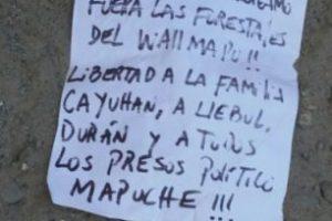 Foto:Cortesía Arauco TV. Imagen Por: