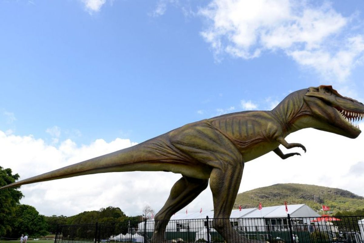 Fue uno de los más grandes dinosaurios carnívoros. Foto:Getty Images. Imagen Por: