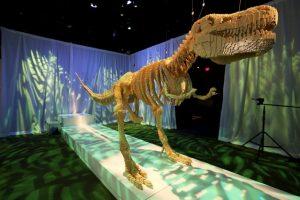 Alcanzaba a medir 13 metros (40 pies) de largo y uno 4 a 6 metros (15 a 20 pies) de altura. Foto:Getty Images. Imagen Por: