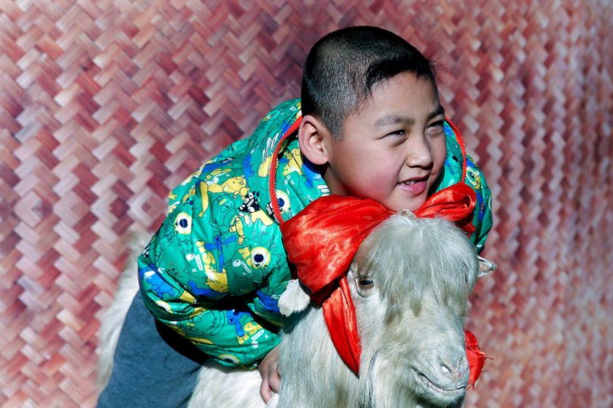 8. La cabra Foto:Getty Images. Imagen Por: