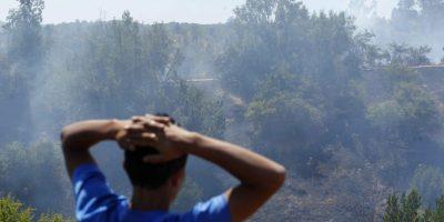 Incendio forestal obligó a cortar el tránsito en Autopista del Itata