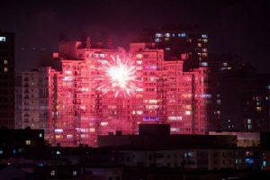 El año 2017 será del gallo, el décimo signo del calendario lunar. Foto:AFP. Imagen Por: