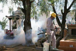 México fumiga para eliminar al mosquito aedes, que transmite el virus Zika Foto:Efe