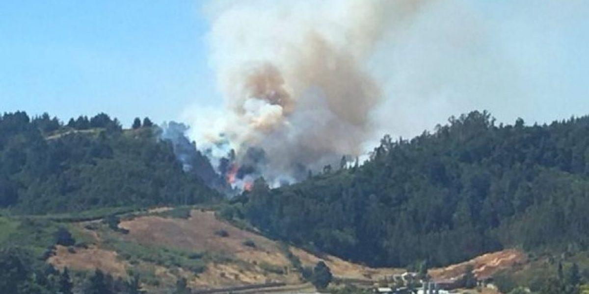 Decretan alerta roja en Temuco por incendio forestal en el cerro Ñielol