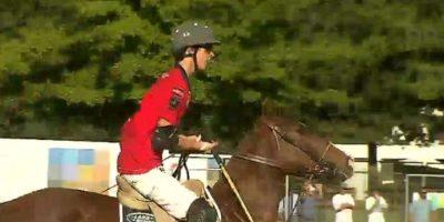 En total suman un millón de dólares: roban nueve caballos desde fundo de Lo Pinto