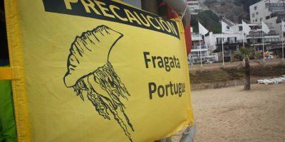 Declaran playas del Biobío libre de fragata portuguesa y las habilitan para el baño