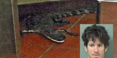 Ingresa en prisión por tirar un caimán dentro de un restaurante en Florida