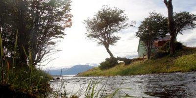 Una década de la Reserva Cabo de Hornos: el