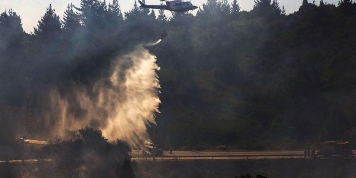 La Araucanía: incendio forestal provocó cortes de tránsito en Ruta 5 Sur