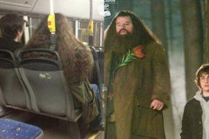 Harry y Hagrid. Foto:vía Facebook/ Parecidos de Bondis. Imagen Por: