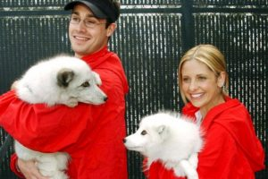 1- Sarah Michelle Gellar y Freddie Prinze Jr. Foto:Getty Images