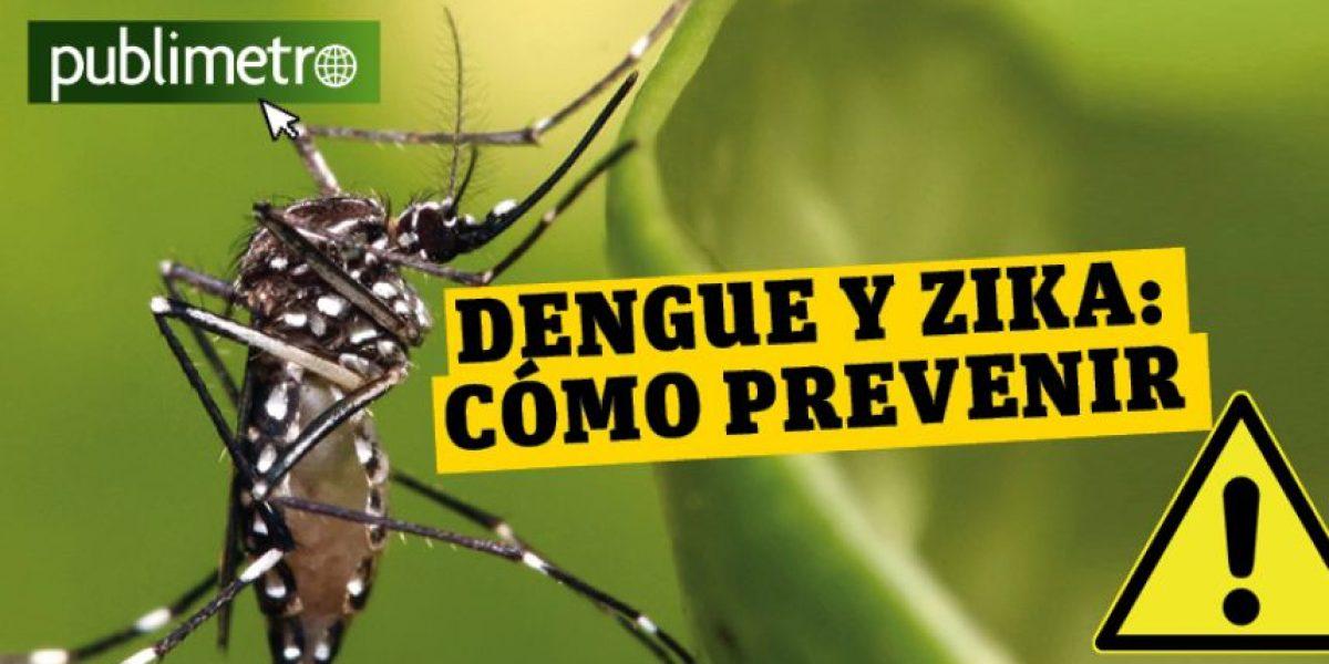 Infografía: Dengue y Zika, cómo prevenir