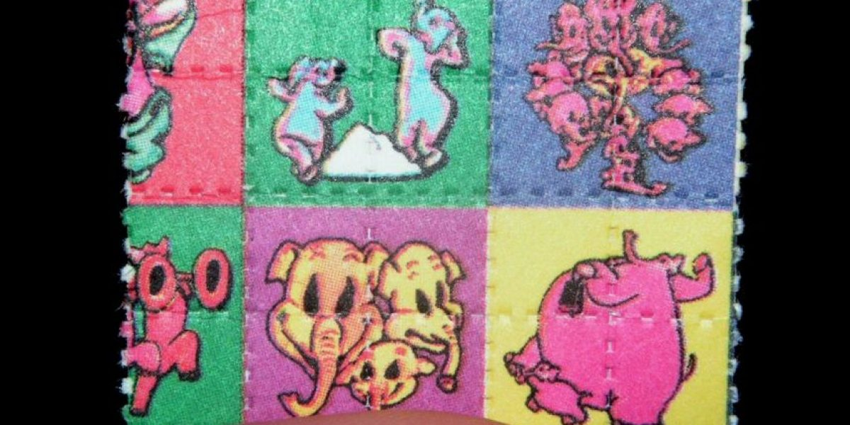 7 formas curiosas en que los narcotraficantes transportan drogas