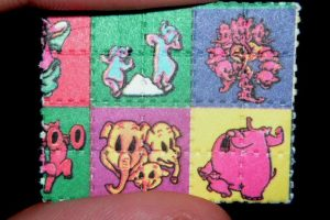 5 drogas más utilizados en el mundo Foto:Wikipedia.org. Imagen Por: