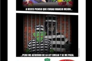 Foto:Captura Twitter/@carabdechile. Imagen Por: