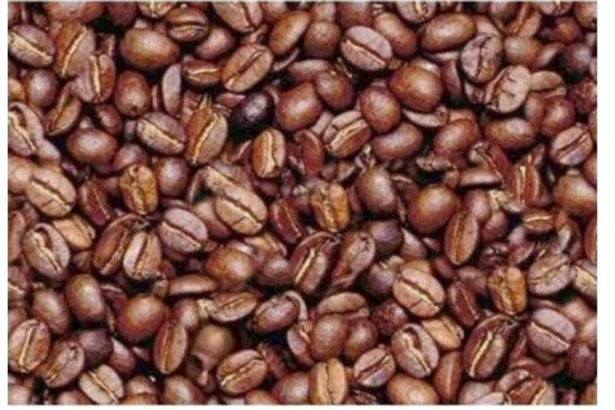 ¿Ya encontraron el rostro humano? Foto:Vía Twtter.com. Imagen Por: