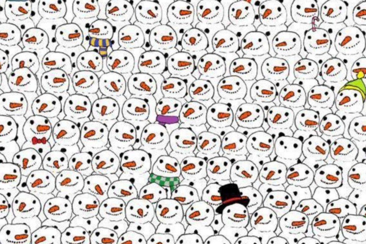Busquen al panda. Foto:Vía Twtter.com. Imagen Por: