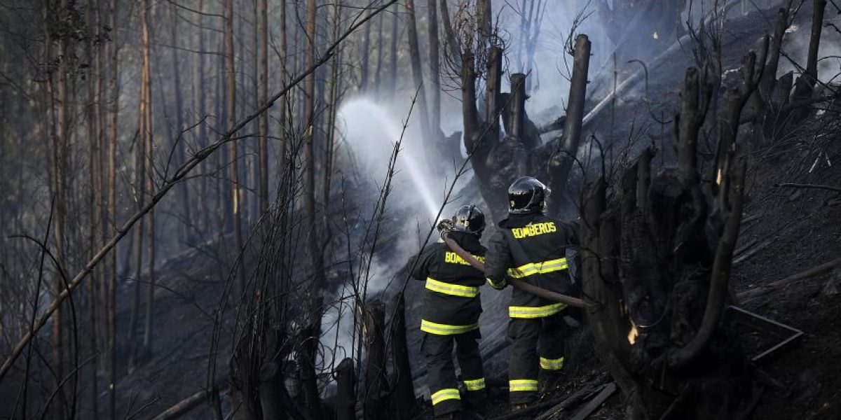 Onemi: 13 incendios forestales aún se mantienen activos en el país