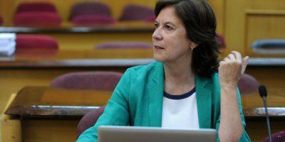 Mariana Awylwin no descarta que la DC analice separarse de la Nueva Mayoría