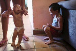 Actualmente no se ha demostrado que el virus Zika sea mortal, pero ya es considerado una emergencia sanitaria mundial, de acuerdo con la Organización Mundial de la Salud Foto:Getty Images. Imagen Por: