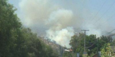 Bomberos y Conaf logran controlar incendio forestal en la comuna de La Reina