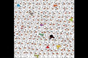 Busquen al panda. Foto:Vía Twitter.com. Imagen Por: